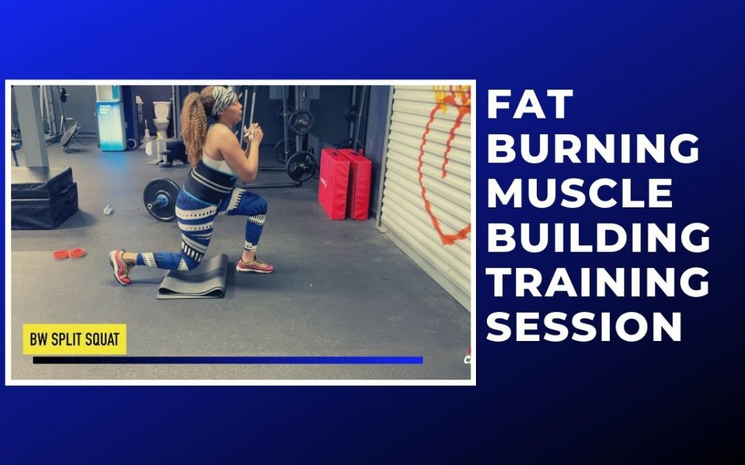 FAT BURNING MUSCLE BUILDING TRAINING SESSION